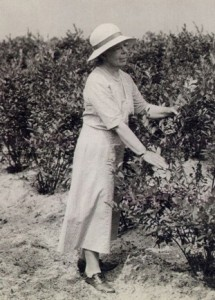 Elizabeth C. White (Generation #3) was the eldest daughter of JJ White.  She domesticated the blueberry, formed the Tru-Blu-Berry Cooperative, and made history in marketing, business, agriculture, and women's heritage.